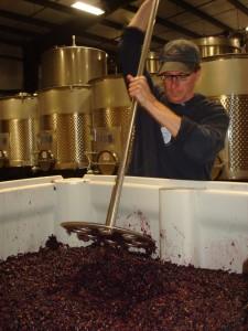 Alan doing a punchdown on a bin of Pinot