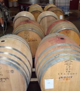 Full Pinot barrels